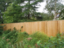 Main Face of Close Board Fence
