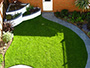 Structured Green Lawn