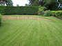 Lawn with raised wooden walling